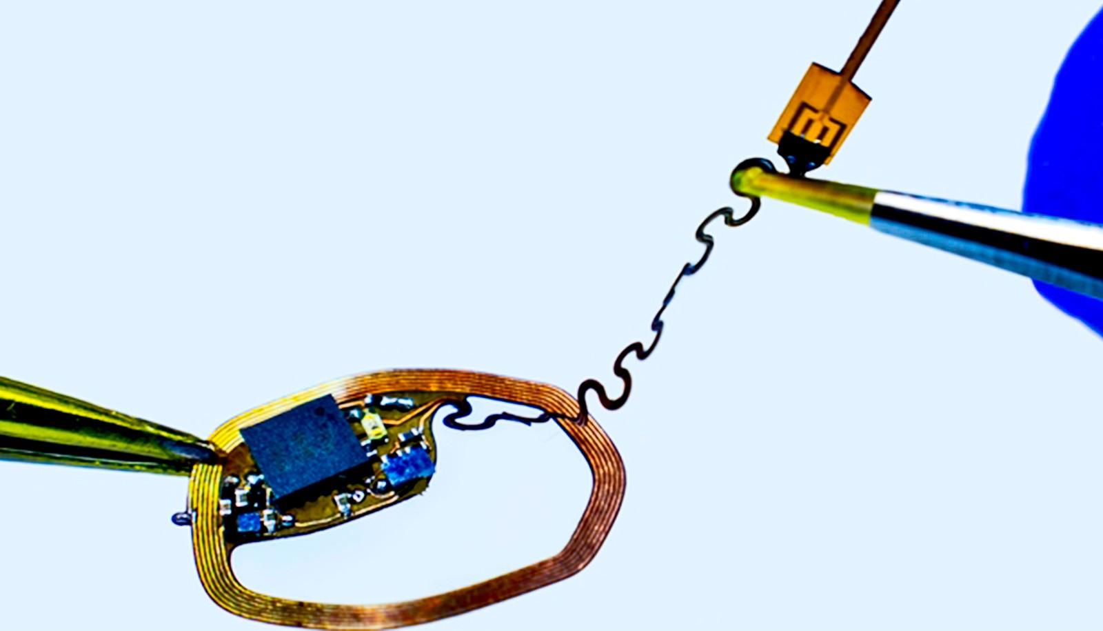 Крошечное устройство записывает активности отдельных нейронов в мозге.